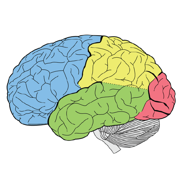 COGNITIVE-TOOLS-THEORY
