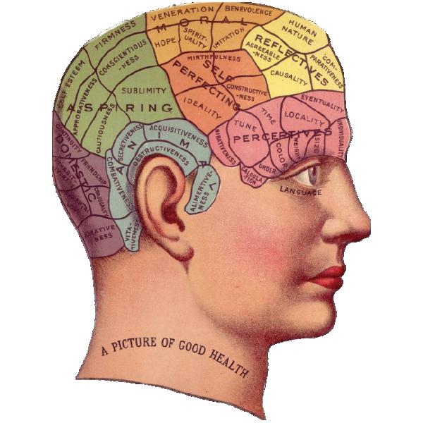 PSYCHOLOGICAL-BEHAVIORISM