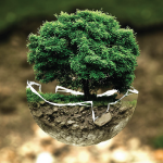 MINDSET-THEORY-FIXED-VS-GROWTH